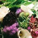 130x130 sq 1236638387954 dawn chris flowers5[1]